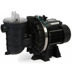 Pompe à filtration de piscine  Mono Tri 15 m3/h  0.75 kW STA - RITE S5P2RE -...